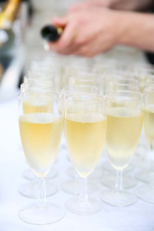 vin d'honneur chateau du vivier